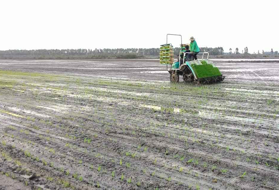 the cost of using laser-controlled equipment and rice transplant machine should be increased from 30 to 50 percent