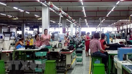 Most protesting employees resume work: VGCL