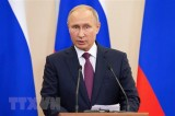 Russian President signs decree on holding Russian Year in Vietnam