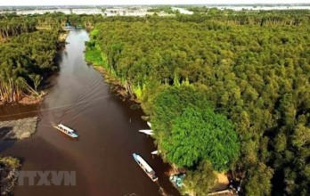 Solutions sought for Mekong Delta's sustainable development