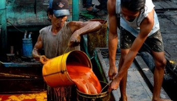 Indonesia to sue EU over palm oil industry concerns