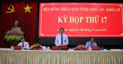 17th session of IXth Long An Provincial People's Council: Delegate groups' opinions satisfactorily explained