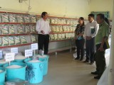 Long An: Enterprises ensure sufficient supply of goods as Covid-19 epidemic develops more complicatedly