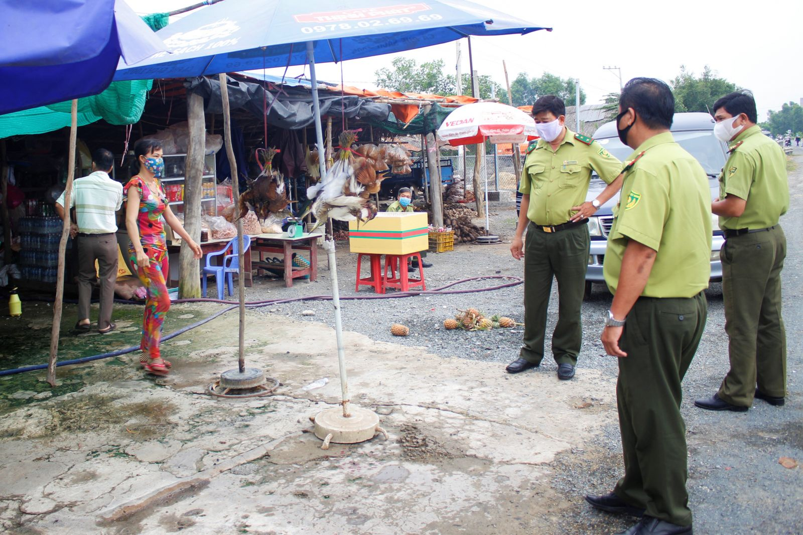The inspection team discover and ask the shop owner to release about 20 individuals of the stork in natural environment